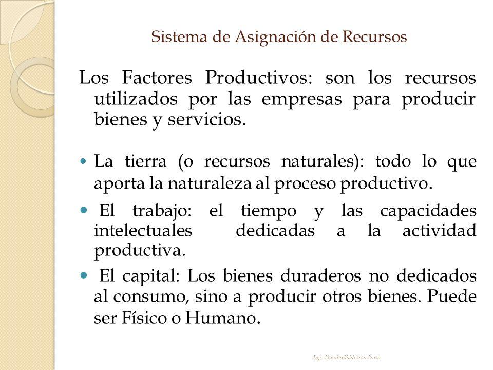 Sistema de Asignación de Recursos Los Factores Productivos: son los recursos utilizados por las empresas para producir bienes y servicios. La tierra (