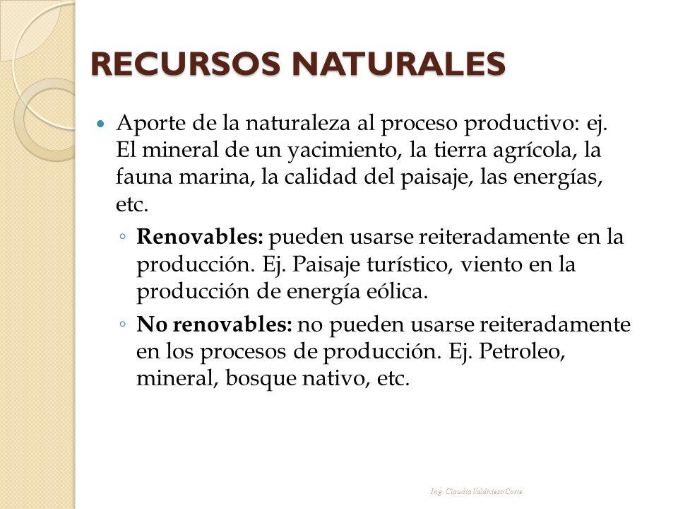 Aporte de la naturaleza al proceso productivo: ej. El mineral de un yacimiento, la tierra agrícola, la fauna marina, la calidad del paisaje, las energ