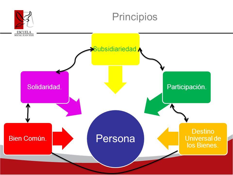 Principios Persona Bien Común. Solidaridad. Participación. Subsidiariedad. Destino Universal de los Bienes.