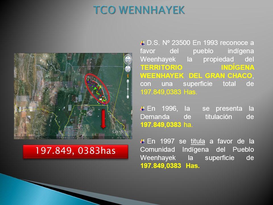D.S. Nº 23500 En 1993 reconoce a favor del pueblo indígena Weenhayek la propiedad del TERRITORIO INDÍGENA WEENHAYEK DEL GRAN CHACO, con una superficie