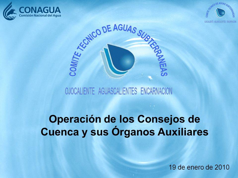 Operación de los Consejos de Cuenca y sus Órganos Auxiliares 19 de enero de 2010