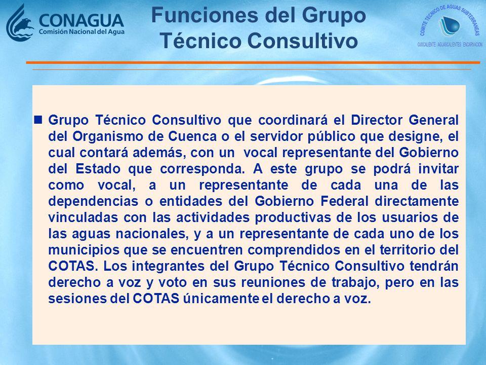 nGrupo Técnico Consultivo que coordinará el Director General del Organismo de Cuenca o el servidor público que designe, el cual contará además, con un vocal representante del Gobierno del Estado que corresponda.
