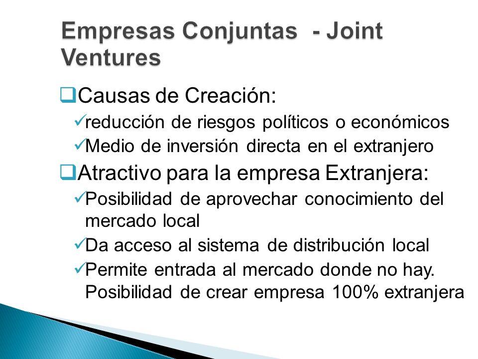 Causas de Creación: reducción de riesgos políticos o económicos Medio de inversión directa en el extranjero Atractivo para la empresa Extranjera: Posi