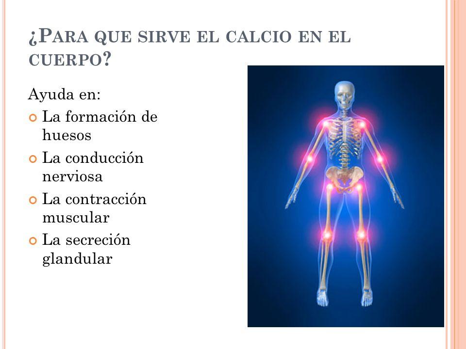 ¿P ARA QUE SIRVE EL CALCIO EN EL CUERPO .