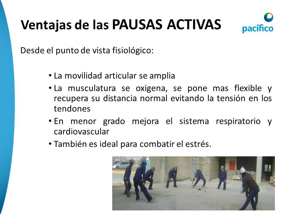 CAUSAS Hábitos posturales inadecuados Mala practica deportiva Debilidad Muscular Sedentarismo Calzado Inadecuado Enfermedades asociadas Otros