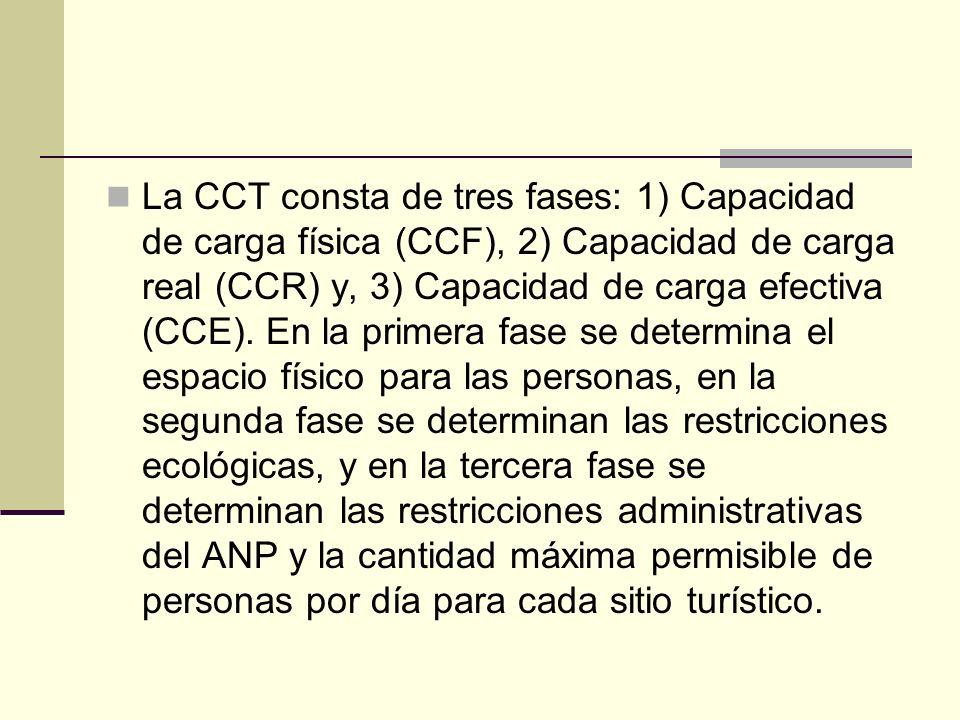 La CCT consta de tres fases: 1) Capacidad de carga física (CCF), 2) Capacidad de carga real (CCR) y, 3) Capacidad de carga efectiva (CCE). En la prime