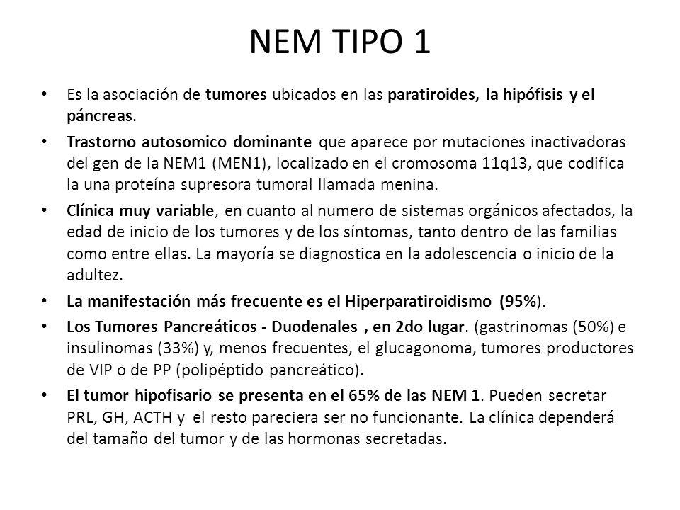 NEM TIPO 1 Es la asociación de tumores ubicados en las paratiroides, la hipófisis y el páncreas. Trastorno autosomico dominante que aparece por mutaci