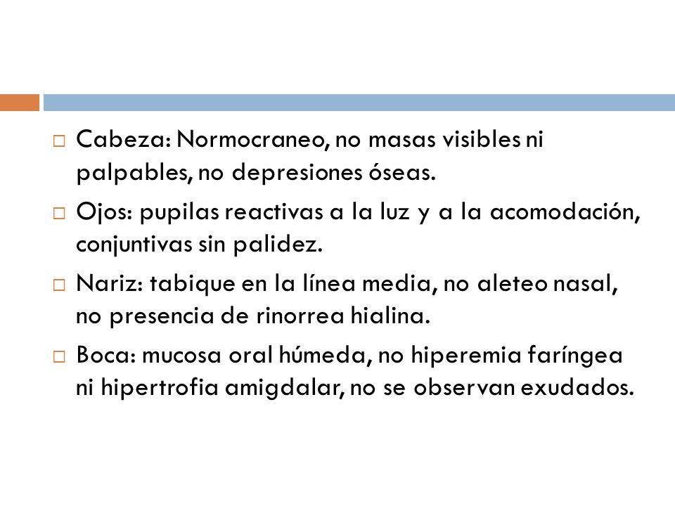 Cabeza: Normocraneo, no masas visibles ni palpables, no depresiones óseas. Ojos: pupilas reactivas a la luz y a la acomodación, conjuntivas sin palide
