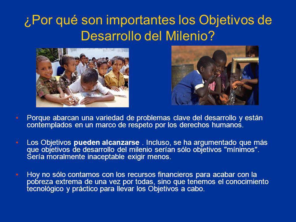 ¿Por qué son importantes los Objetivos de Desarrollo del Milenio? Porque abarcan una variedad de problemas clave del desarrollo y están contemplados e