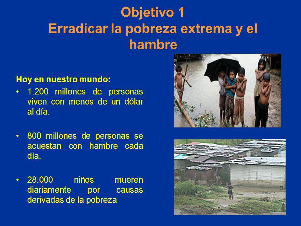 Objetivo 1 Erradicar la pobreza extrema y el hambre Hoy en nuestro mundo: 1.200 millones de personas viven con menos de un dólar al día. 800 millones