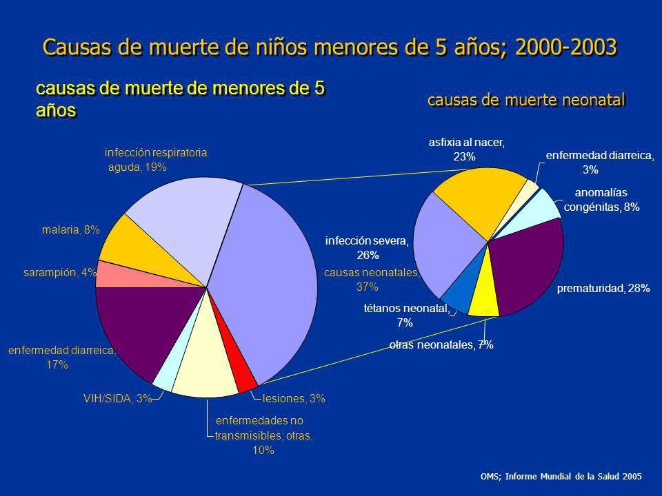 causas de muerte de menores de 5 años OMS; Informe Mundial de la Salud 2005 causas de muerte neonatal Causas de muerte de niños menores de 5 años; 200