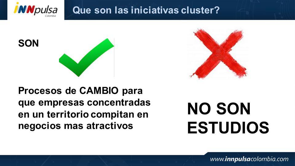 Que son las iniciativas cluster? SON Procesos de CAMBIO para que empresas concentradas en un territorio compitan en negocios mas atractivos NO SON EST