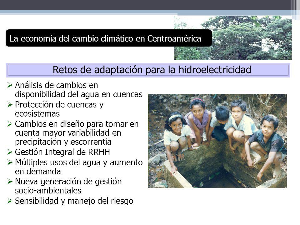 Retos de adaptación para la hidroelectricidad Análisis de cambios en disponibilidad del agua en cuencas Protección de cuencas y ecosistemas Cambios en