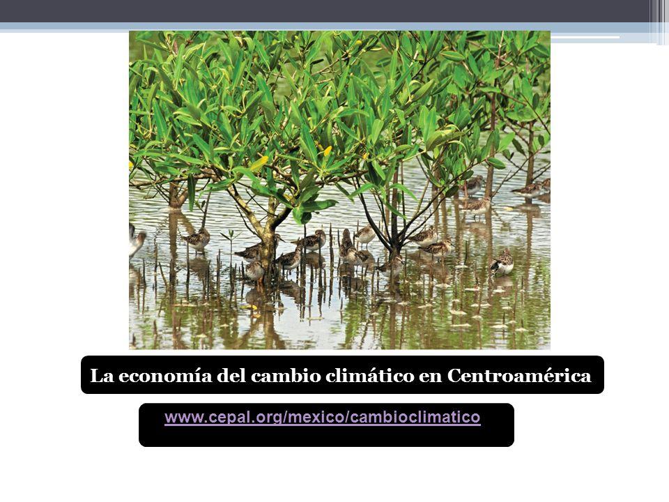 www.cepal.org/mexico/cambioclimatico La economía del cambio climático en Centroamérica