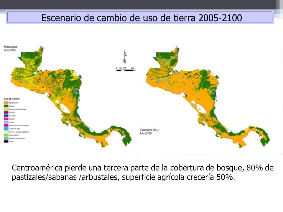 Centroamérica pierde una tercera parte de la cobertura de bosque, 80% de pastizales/sabanas /arbustales, superficie agrícola crecería 50%. Escenario d