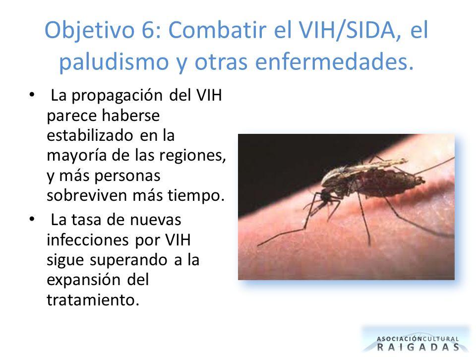 Objetivo 6: Combatir el VIH/SIDA, el paludismo y otras enfermedades. La propagación del VIH parece haberse estabilizado en la mayoría de las regiones,