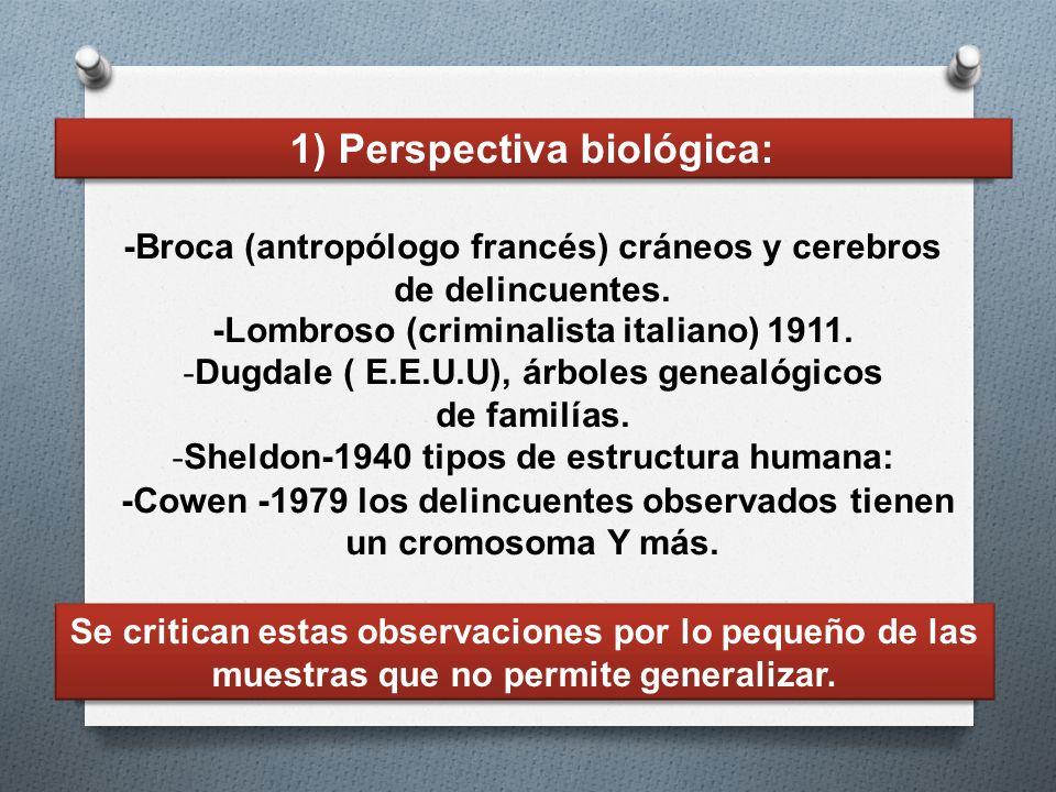 -Broca (antropólogo francés) cráneos y cerebros de delincuentes. -Lombroso (criminalista italiano) 1911. - Dugdale ( E.E.U.U), árboles genealógicos de