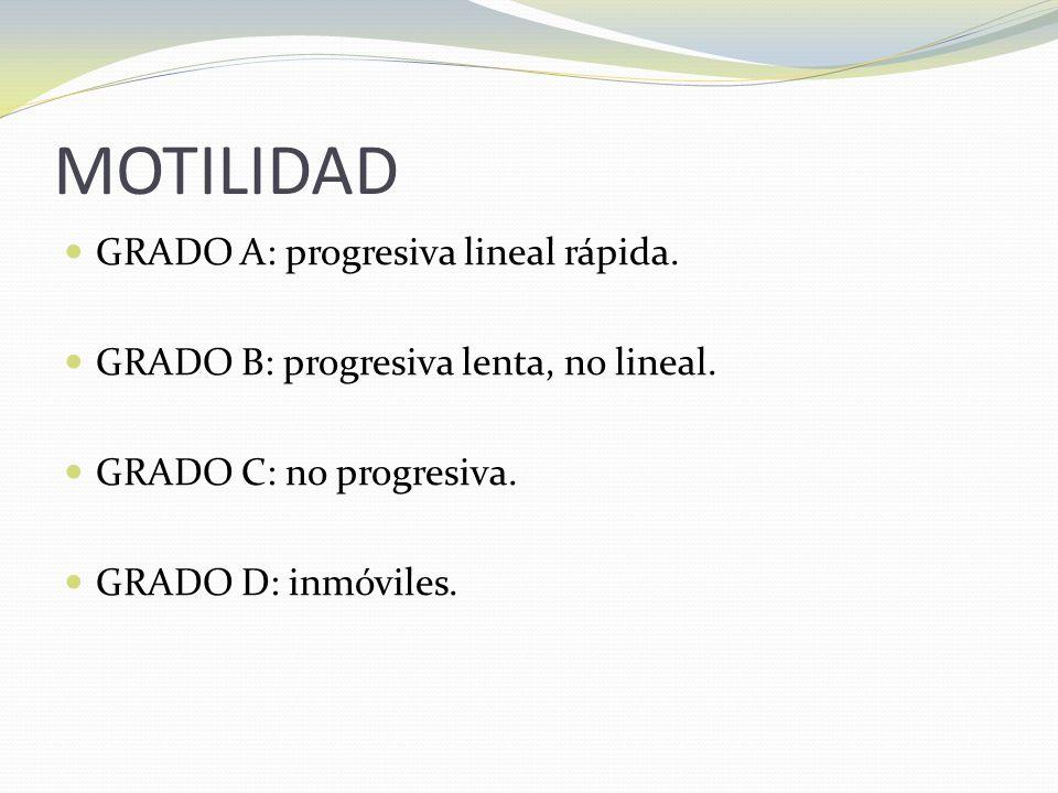 MOTILIDAD GRADO A: progresiva lineal rápida.GRADO B: progresiva lenta, no lineal.