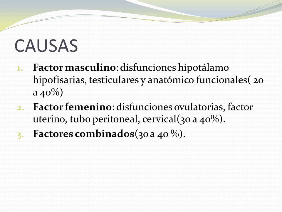 CAUSAS 1.