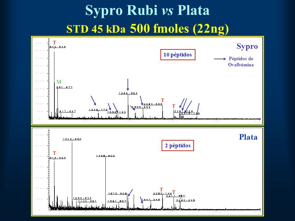 Sypro Rubi vs Plata STD 45 kDa 500 fmoles (22ng) Sypro Plata T M T T T T T .