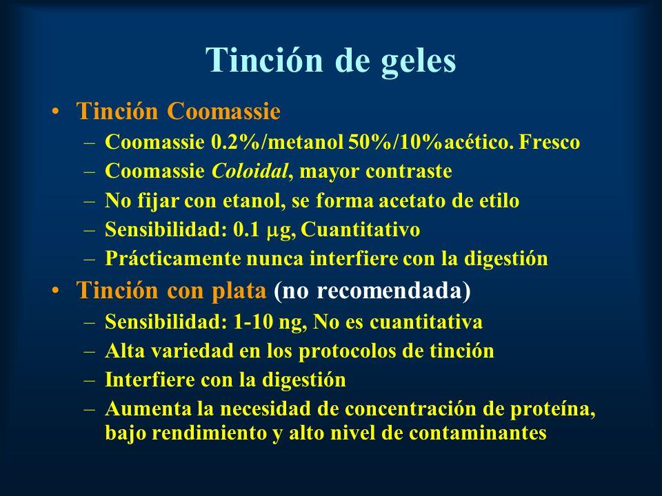 Tinción de geles Tinción Coomassie –Coomassie 0.2%/metanol 50%/10%acético.