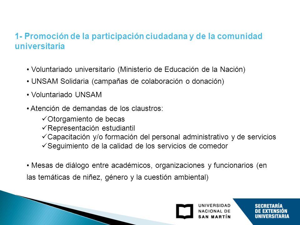 Voluntariado universitario (Ministerio de Educación de la Nación) UNSAM Solidaria (campañas de colaboración o donación) Voluntariado UNSAM Atención de