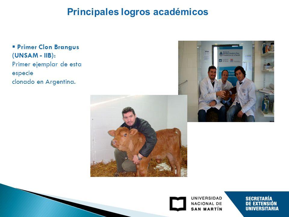 Primer Clon Brangus (UNSAM - IIB): Primer ejemplar de esta especie clonado en Argentina. Principales logros académicos