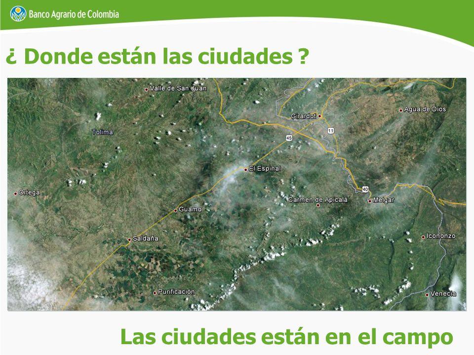 La superficie terrestre de Colombia es de 114.17 millones de hectáreas