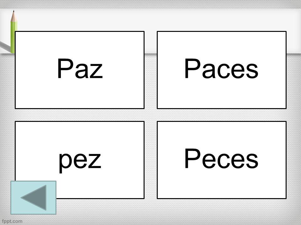 PazPaces pezPeces