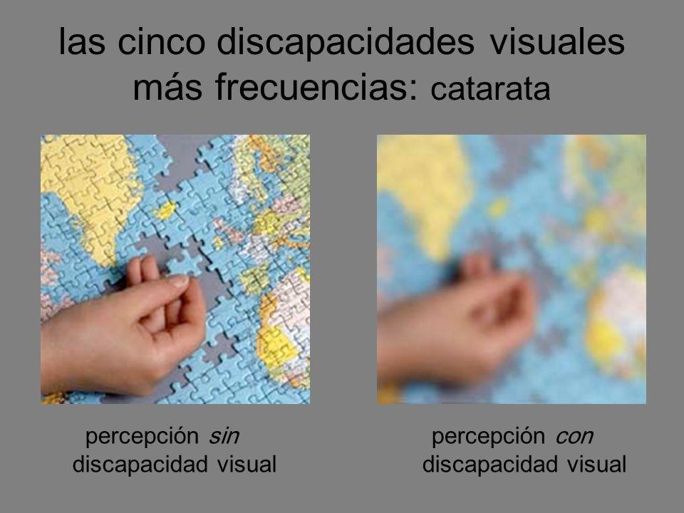 las cinco discapacidades visuales más frecuencias: catarata percepción sin discapacidad visual percepción con discapacidad visual