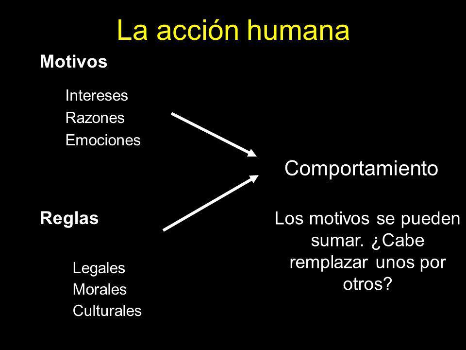 La acción humana Motivos Reglas Comportamiento Intereses Razones Emociones Los motivos se pueden sumar.