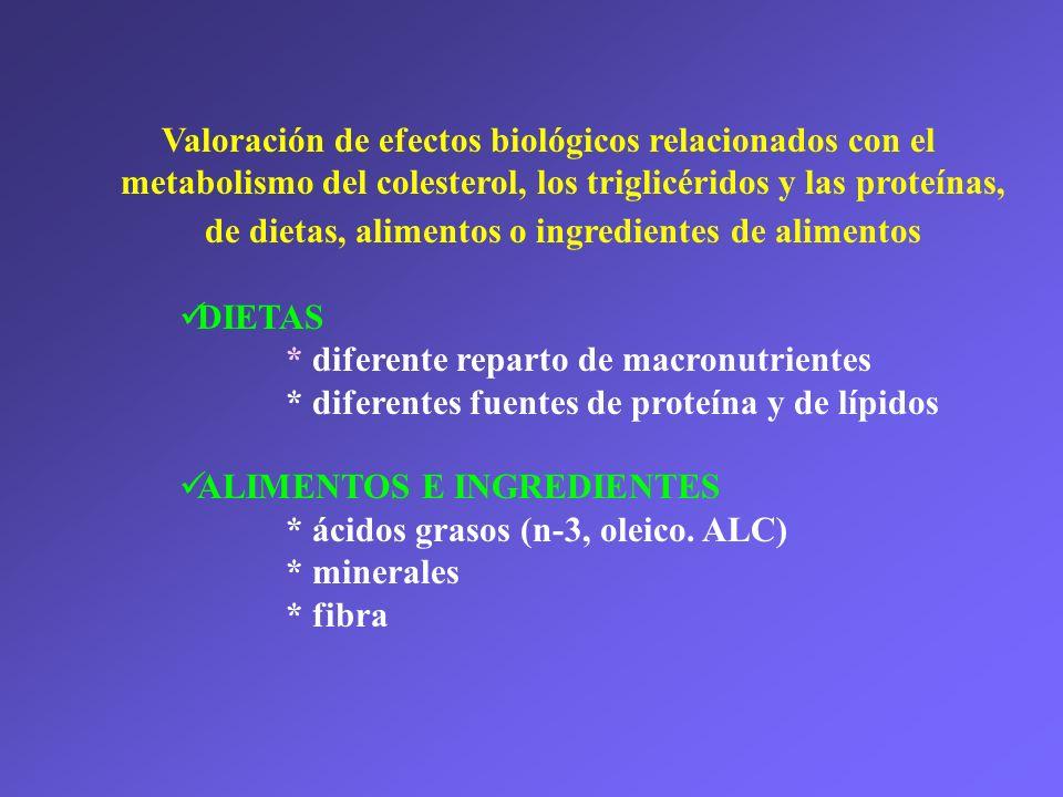 Valoración de efectos biológicos relacionados con el metabolismo del colesterol, los triglicéridos y las proteínas, de dietas, alimentos o ingredientes de alimentos DIETAS * diferente reparto de macronutrientes * diferentes fuentes de proteína y de lípidos ALIMENTOS E INGREDIENTES * ácidos grasos (n-3, oleico.