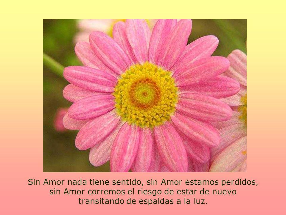 Por eso es muy importante que sea el Amor lo único que inspire tus actos.