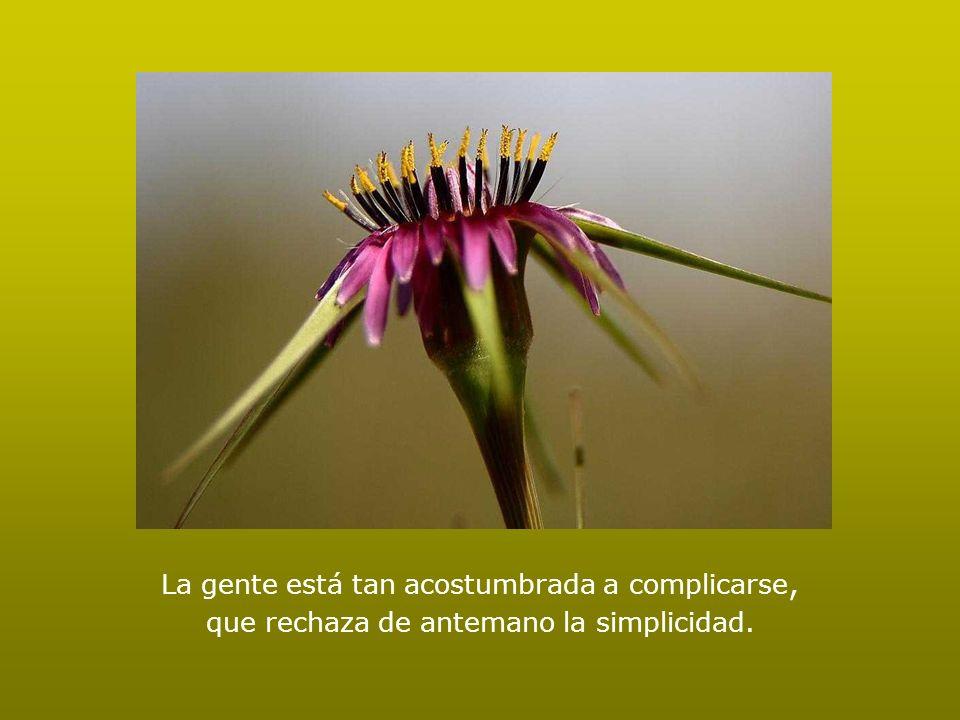 La infelicidad no es un problema técnico, es el resultado de haber tomado el camino equivocado.
