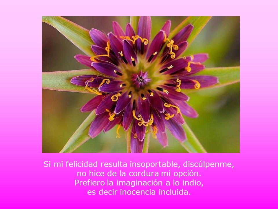 Si mi felicidad resulta insoportable, discúlpenme, no hice de la cordura mi opción.