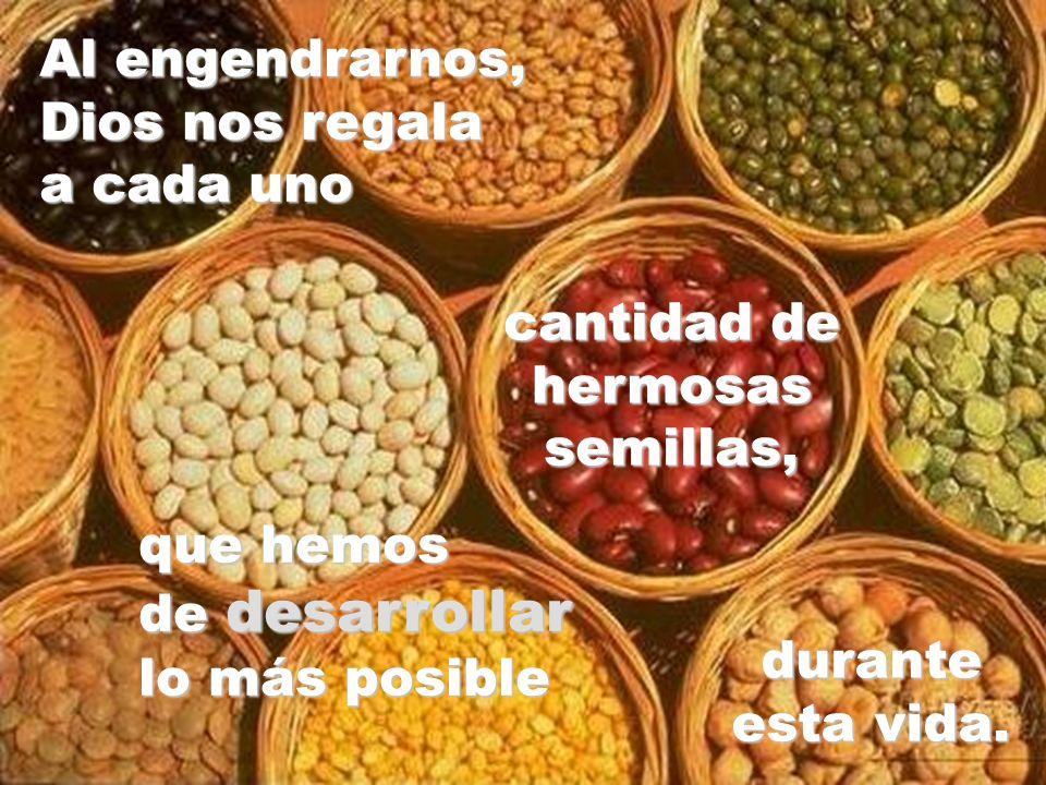 Al engendrarnos, Dios nos regala a cada uno cantidad de hermosas semillas, que hemos de desarrollar lo más posible durante esta vida.