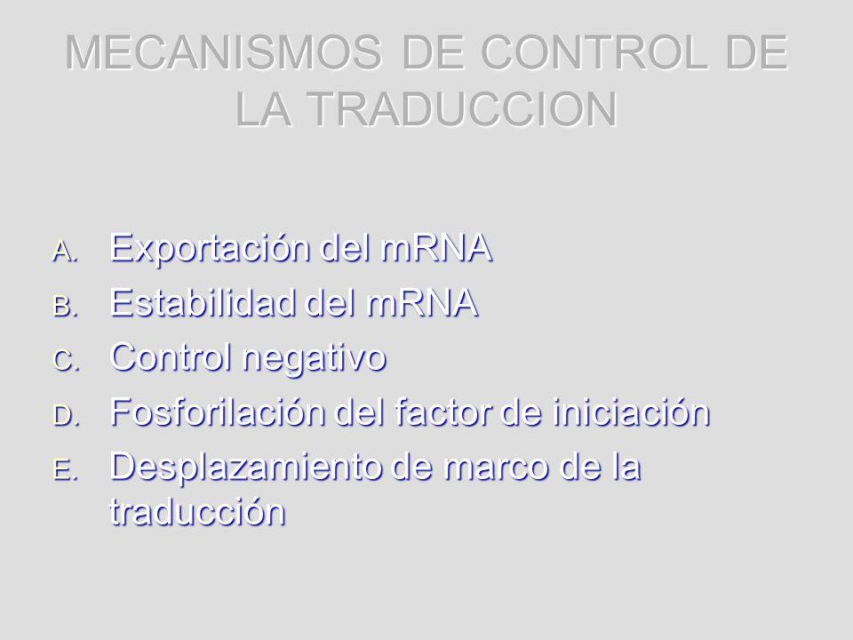 MECANISMOS DE CONTROL DE LA TRADUCCION A. Exportación del mRNA B. Estabilidad del mRNA C. Control negativo D. Fosforilación del factor de iniciación E