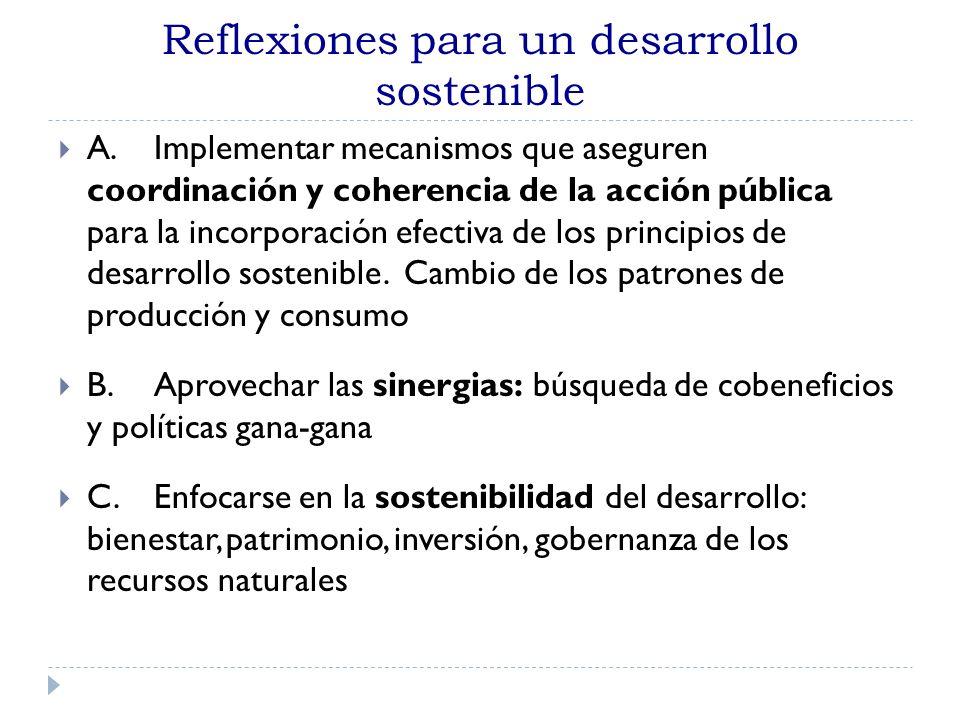Reflexiones para un desarrollo sostenible A.Implementar mecanismos que aseguren coordinación y coherencia de la acción pública para la incorporación e