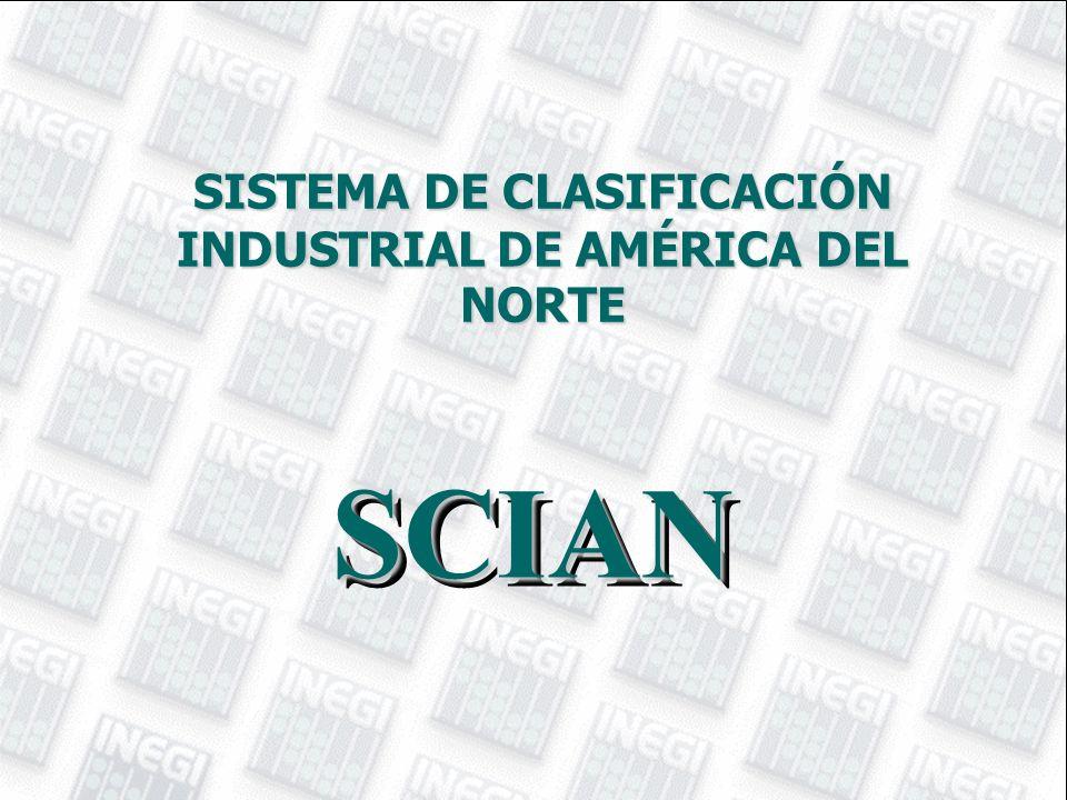SCIAN SCIAN SISTEMA DE CLASIFICACIÓN INDUSTRIAL DE AMÉRICA DEL NORTE