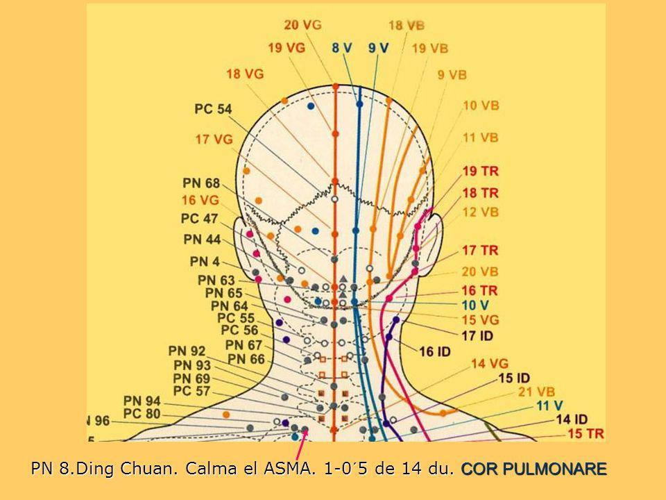 PN 8.Ding Chuan. Calma el ASMA. 1-0´5 de 14 du. COR PULMONARE