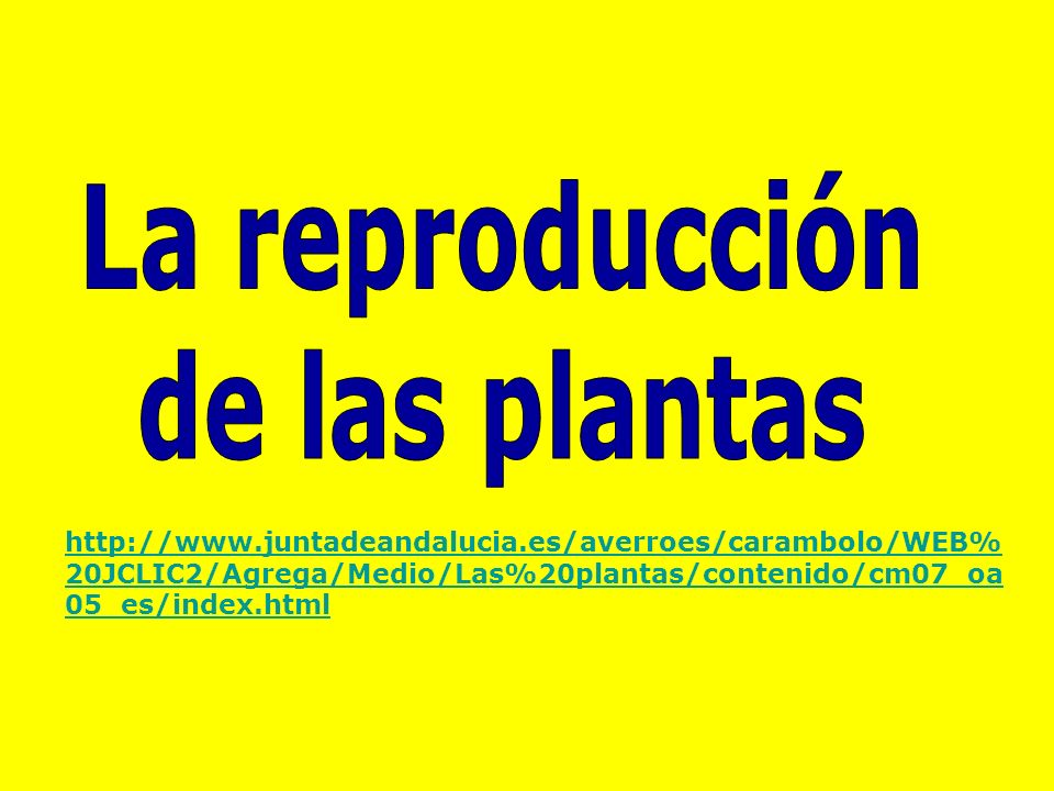 http://www.juntadeandalucia.es/averroes/carambolo/WEB% 20JCLIC2/Agrega/Medio/Las%20plantas/contenido/cm07_oa 05_es/index.html