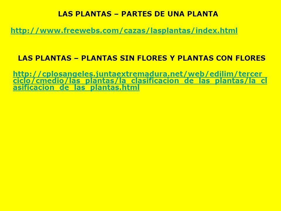 LAS PLANTAS – PARTES DE UNA PLANTA http://www.freewebs.com/cazas/lasplantas/index.html LAS PLANTAS – PLANTAS SIN FLORES Y PLANTAS CON FLORES http://cp