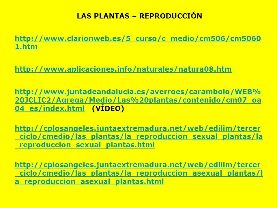 LAS PLANTAS – REPRODUCCIÓN http://www.clarionweb.es/5_curso/c_medio/cm506/cm5060 1.htm http://www.aplicaciones.info/naturales/natura08.htm http://www.