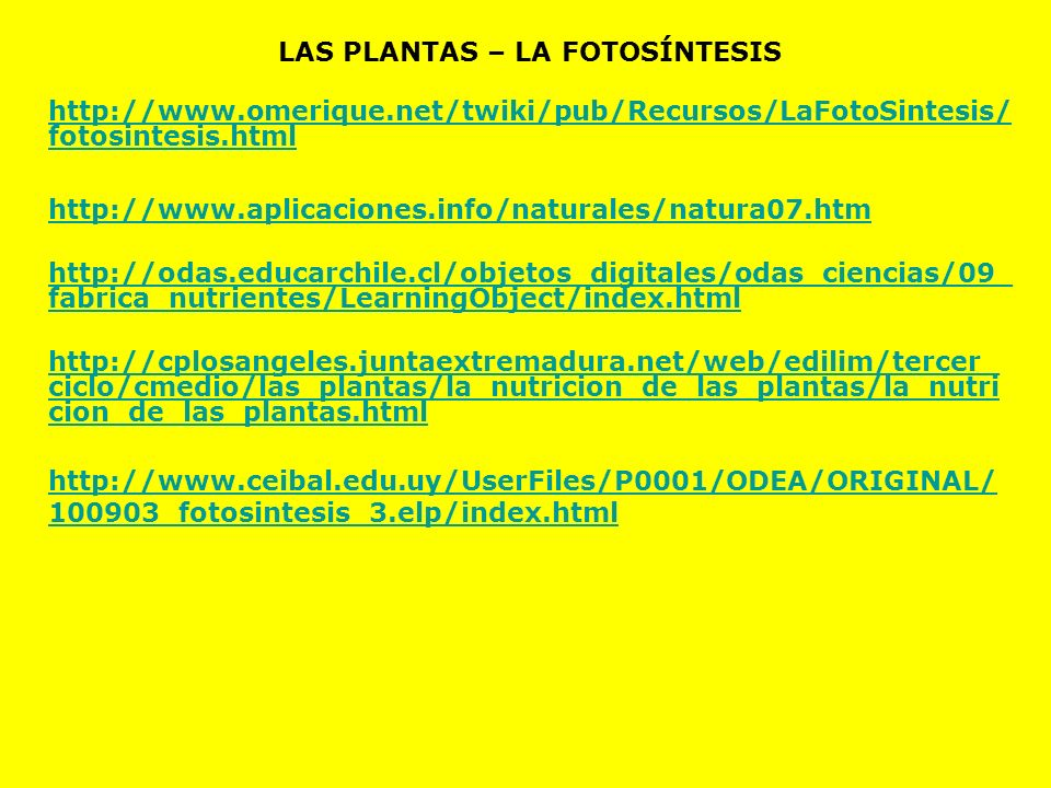 LAS PLANTAS – LA FOTOSÍNTESIS http://www.omerique.net/twiki/pub/Recursos/LaFotoSintesis/ fotosintesis.html http://www.aplicaciones.info/naturales/natu