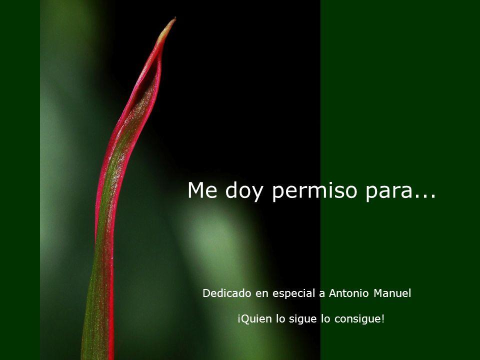 Me doy permiso para... Dedicado en especial a Antonio Manuel ¡Quien lo sigue lo consigue!