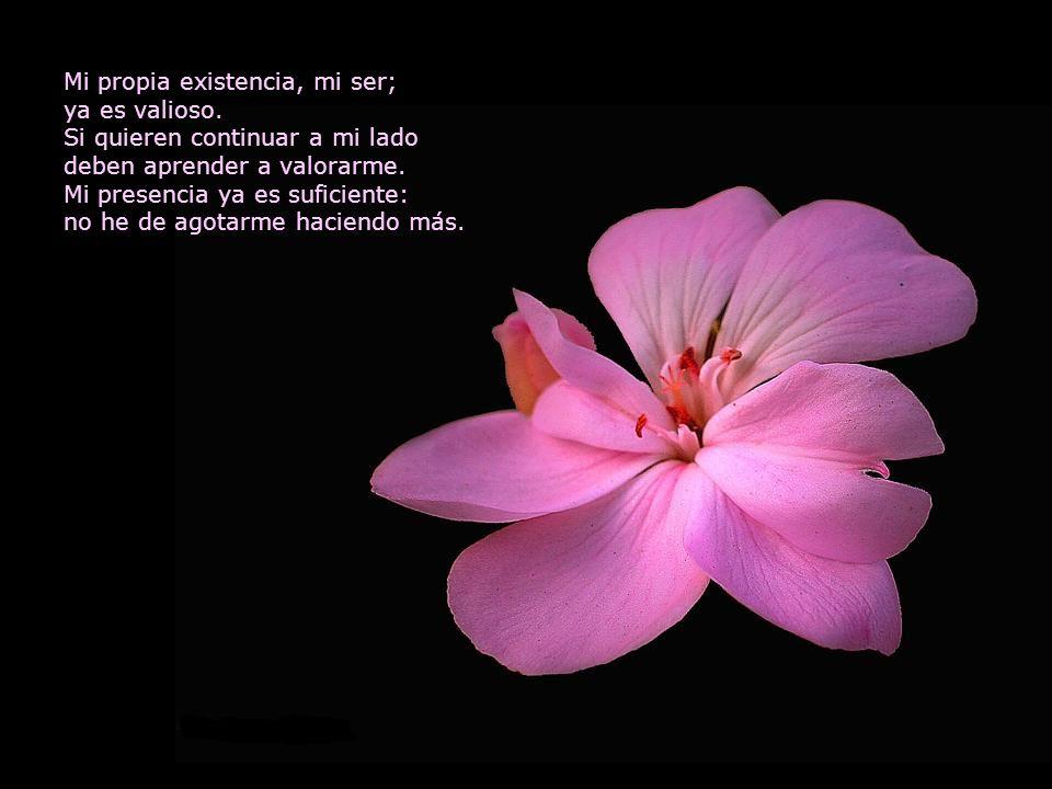 Mi propia existencia, mi ser; ya es valioso.