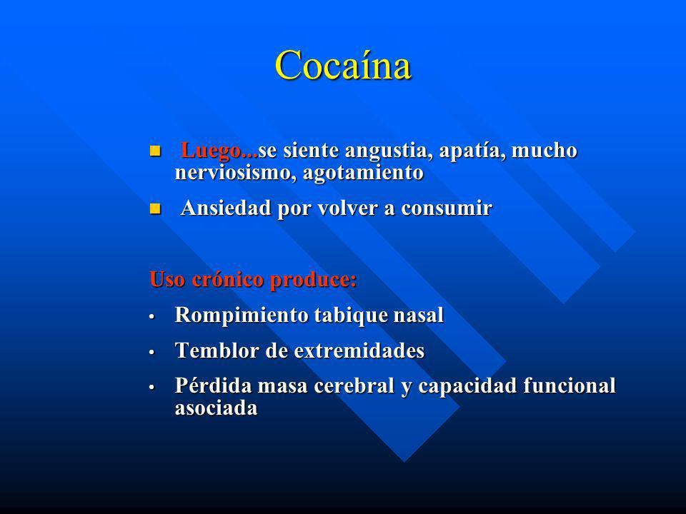 Coca (Clorhidrato de cocaína): La persona se siente acelerada Elimina sensación de cansancio y hambre Se acelera el corazón y la respiración No se pue