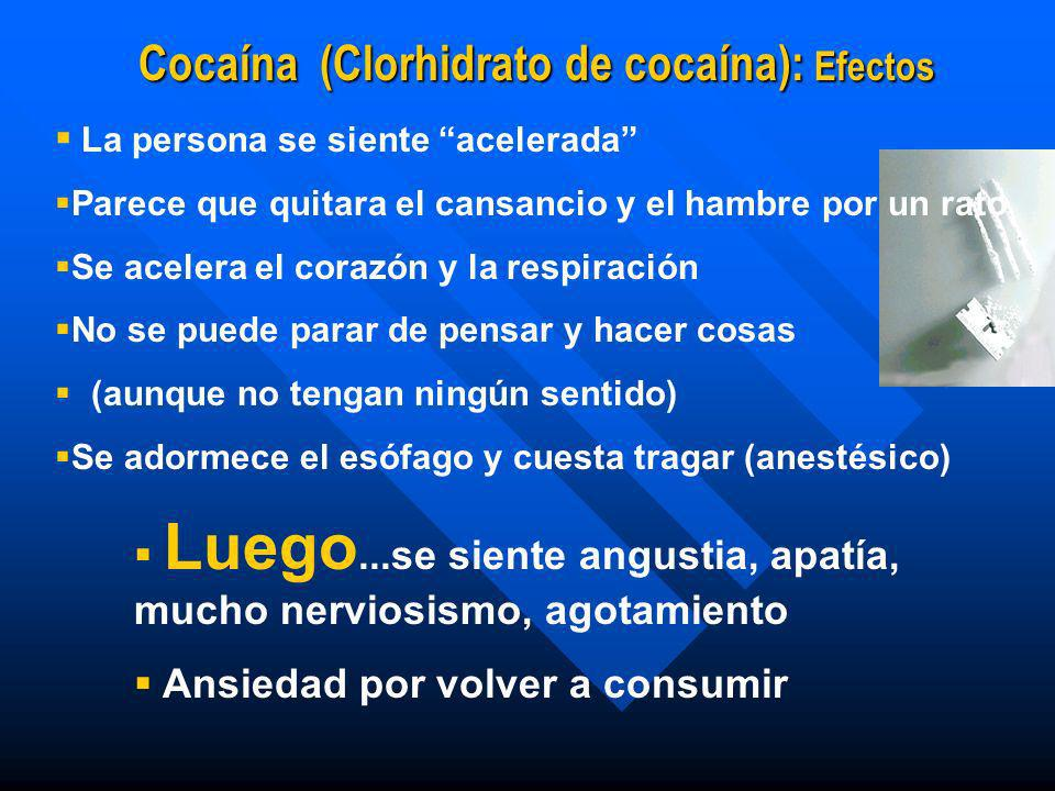 Síndrome de Privación a Cocaína. n Fase 3 : Extinción. n De duración indeterminada, hasta 10 meses o más. n Craving se espacia. n Paciente todavía pue
