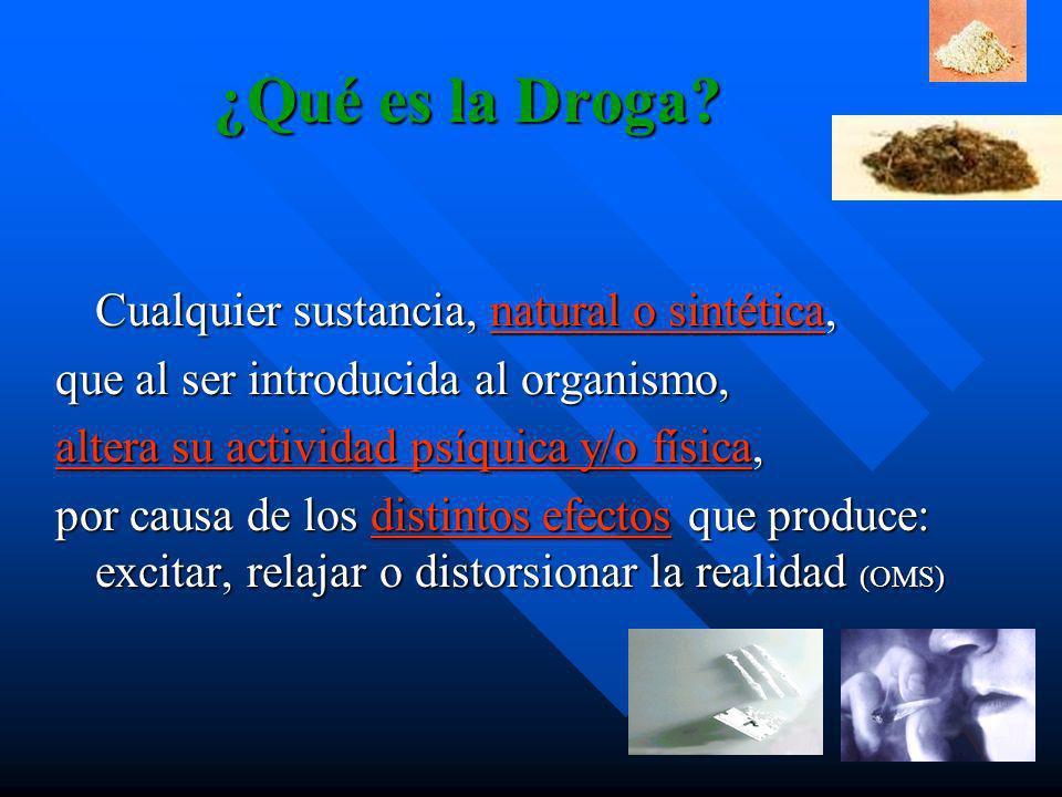 Efectos de las Drogas Lícitas e Ilícitas en el Organismo Humano Curso Usos y Abusos de Drogas ¿Responsabilidad Social o Autonomía Personal? 11 de Agos