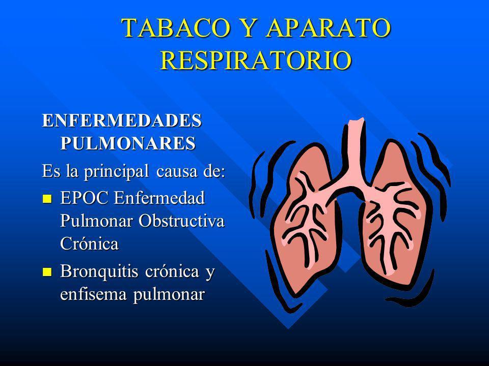 ENFERMEDAD CORONARIA frecuencia IAM frecuencia IAM 2 a 4 veces mayor riesgo muerte súbita Relación dosis respuesta entre fumar y enf.coronaria n ACCID